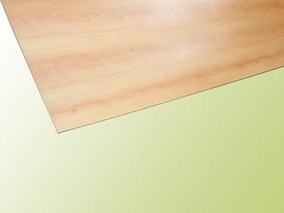 wangenverkleidung laminat ahorn hafa treppen produktkatalog. Black Bedroom Furniture Sets. Home Design Ideas
